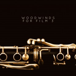 MASSIVE1065 Woodwinds For Film 3_cover_2500pxb